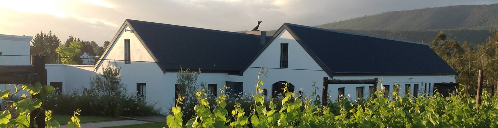 Newstead Wine Farm in Plettenberg Bay